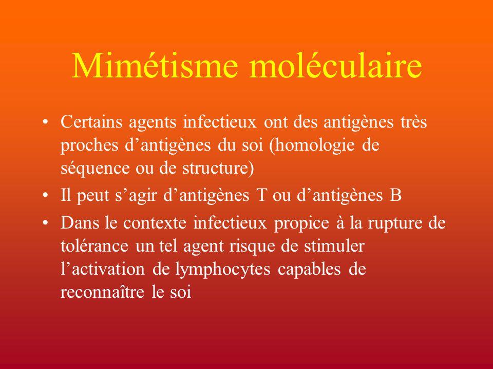 Mimétisme moléculaire Certains agents infectieux ont des antigènes très proches d'antigènes du soi (homologie de séquence ou de structure) Il peut s'a
