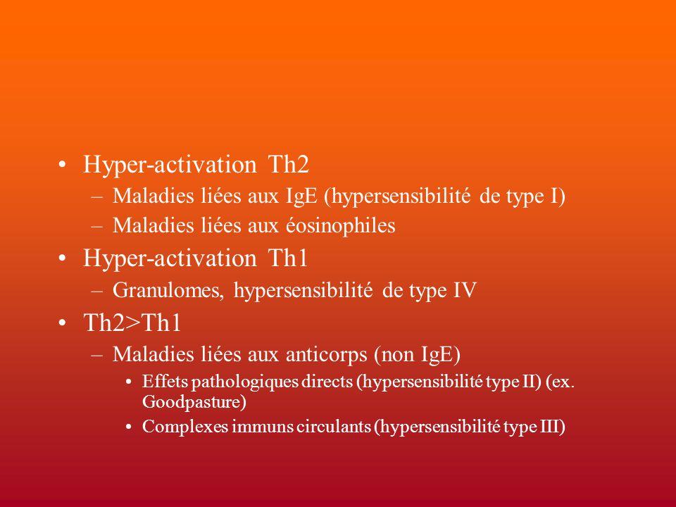 Hyper-activation Th2 –Maladies liées aux IgE (hypersensibilité de type I) –Maladies liées aux éosinophiles Hyper-activation Th1 –Granulomes, hypersens