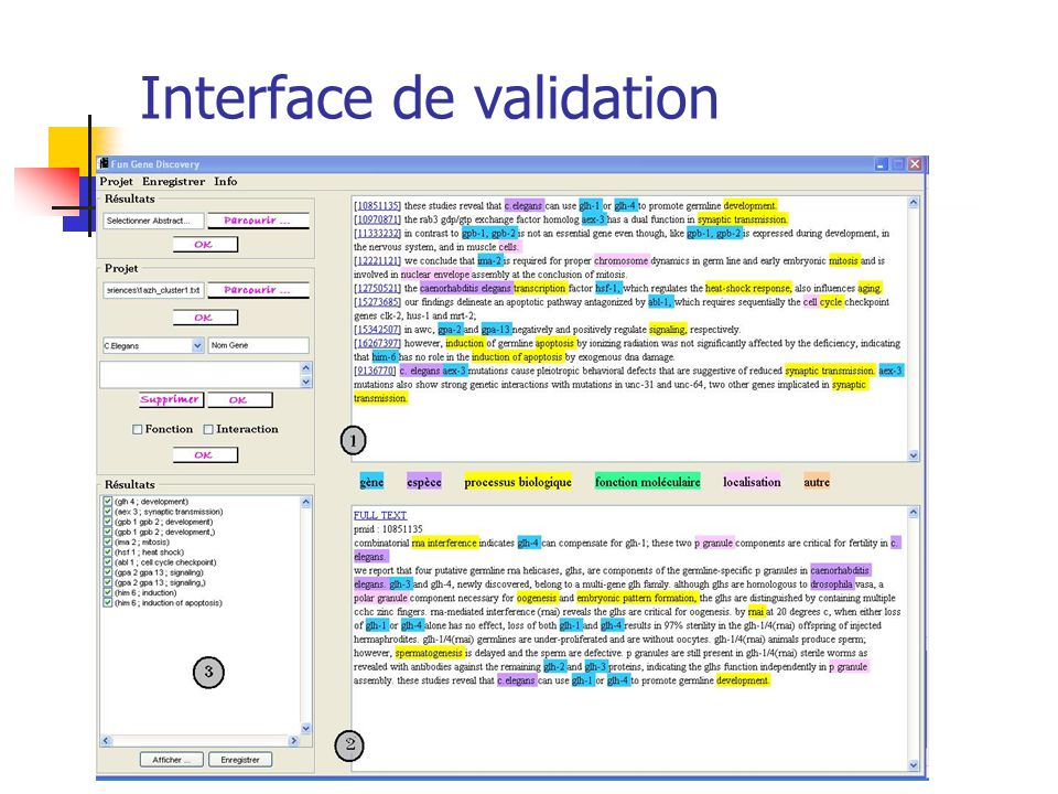 Interface de validation