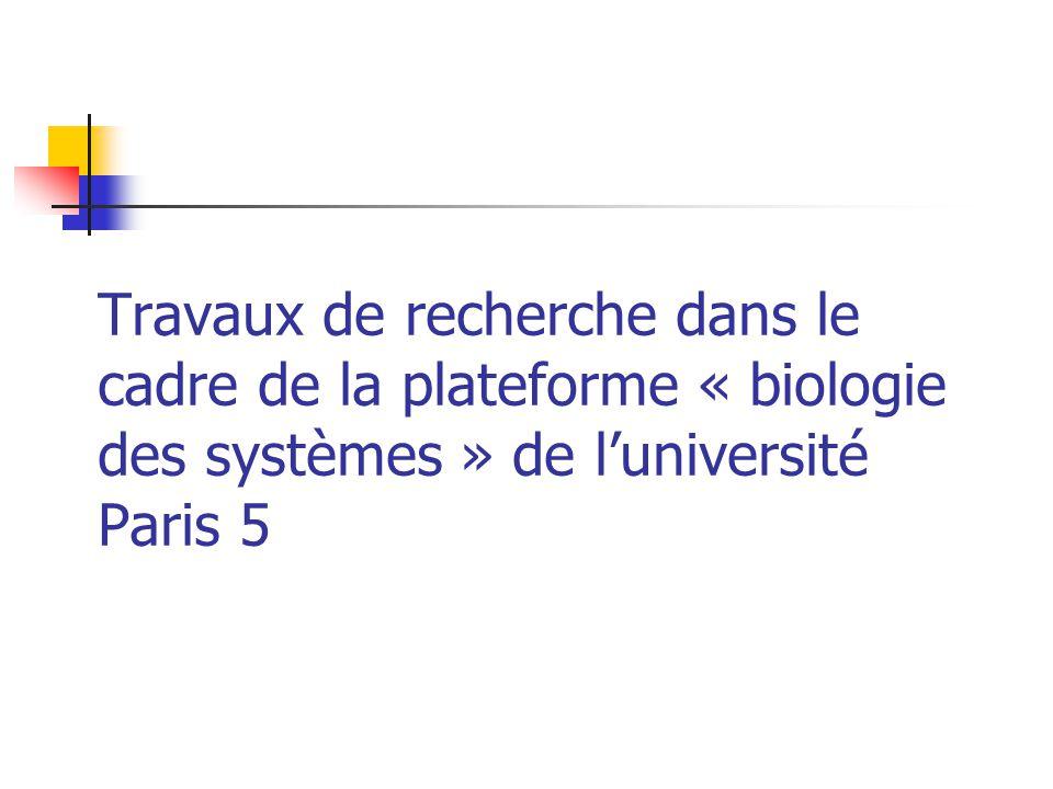 Travaux de recherche dans le cadre de la plateforme « biologie des systèmes » de l'université Paris 5