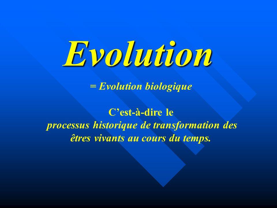 Evolution = Evolution biologique C'est-à-dire le processus historique de transformation des êtres vivants au cours du temps.