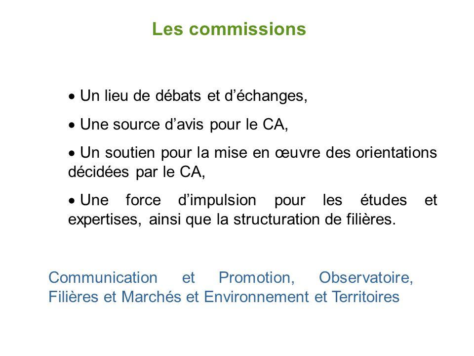 Les commissions  Un lieu de débats et d'échanges,  Une source d'avis pour le CA,  Un soutien pour la mise en œuvre des orientations décidées par le