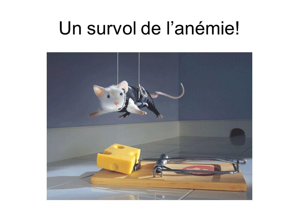 L'anémie chez le jeune enfant : comment s'y retrouver? Dr. Valérie Larouche Hémato-oncologue pédiatre CHUQ, Pavillon CHUL Novembre 2007