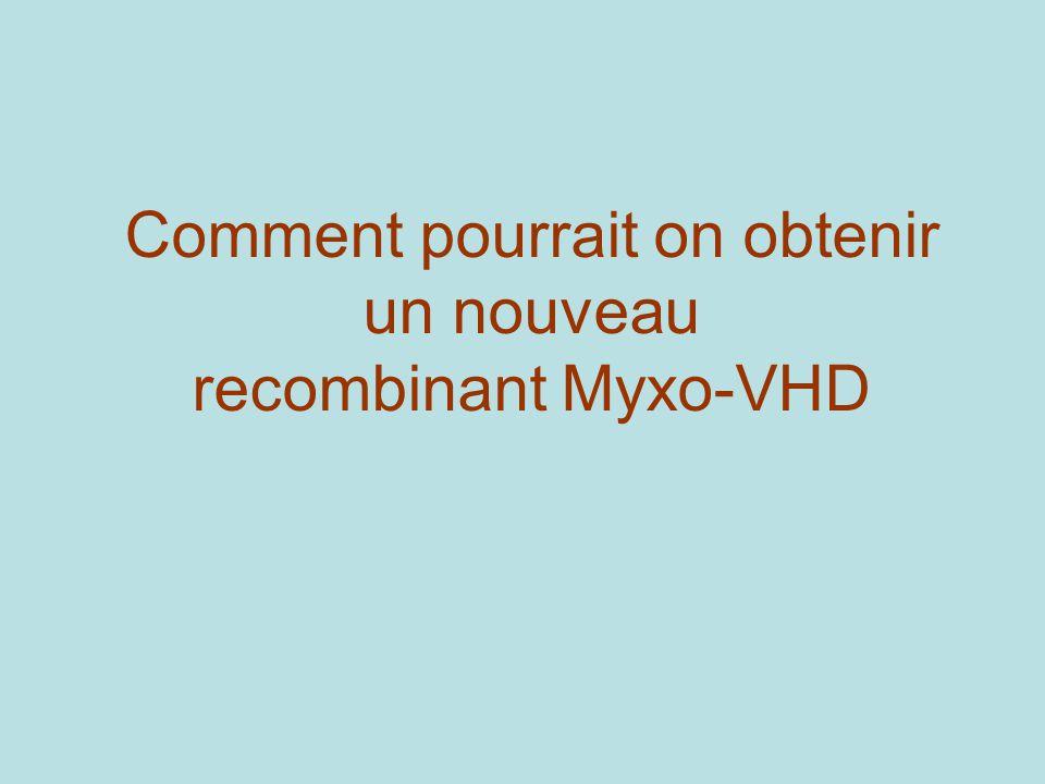 Comment pourrait on obtenir un nouveau recombinant Myxo-VHD