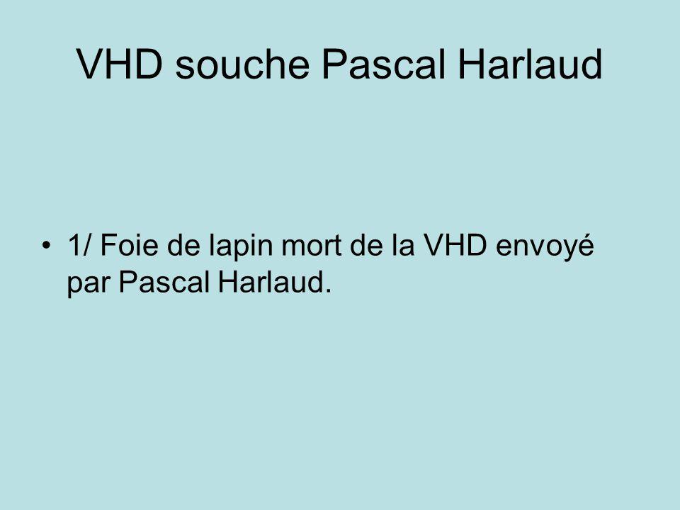 VHD souche Pascal Harlaud 1/ Foie de lapin mort de la VHD envoyé par Pascal Harlaud.