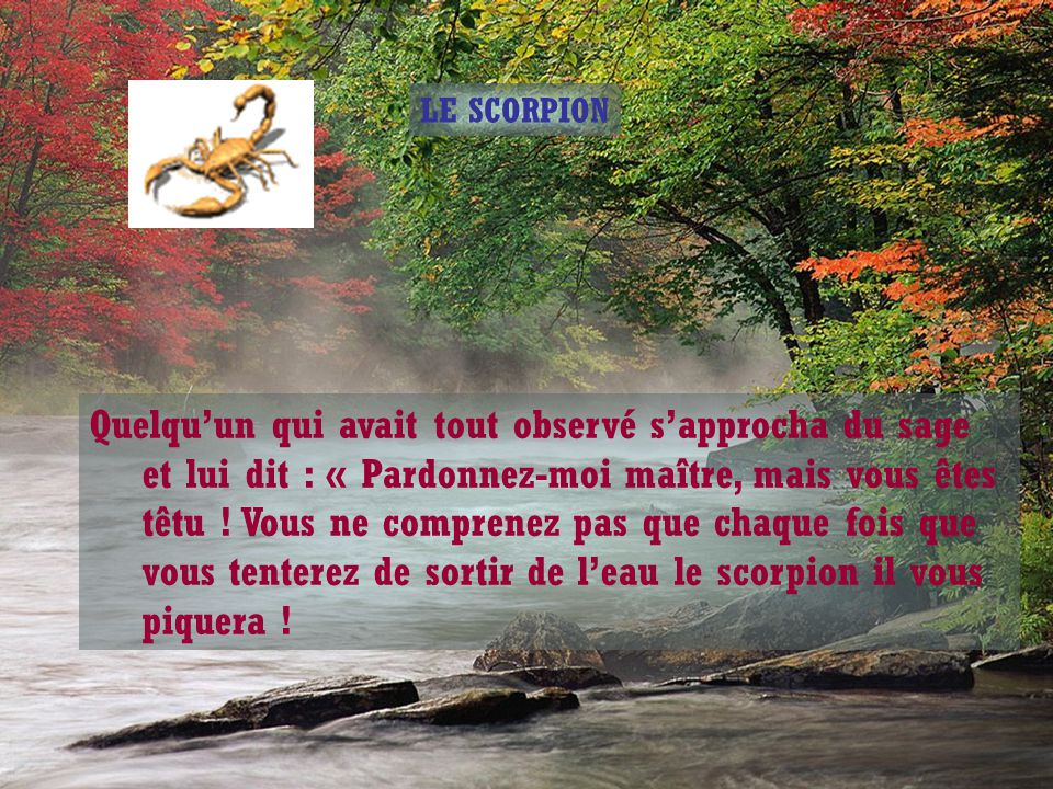 LE SCORPION Un sage oriental vit qu'un scorpion était en train de se noyer et décida de le sortir de l'eau, mais lorsqu'il le fit, le scorpion le piqu