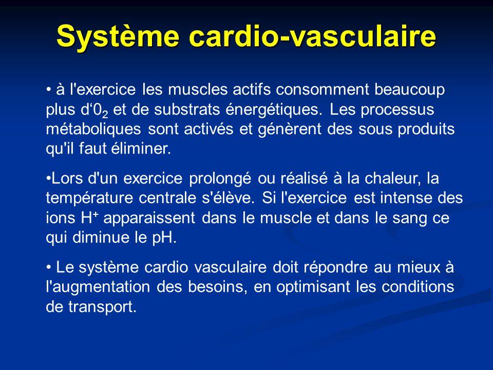Système cardio-vasculaire à l'exercice les muscles actifs consomment beaucoup plus d'0 2 et de substrats énergétiques. Les processus métaboliques sont
