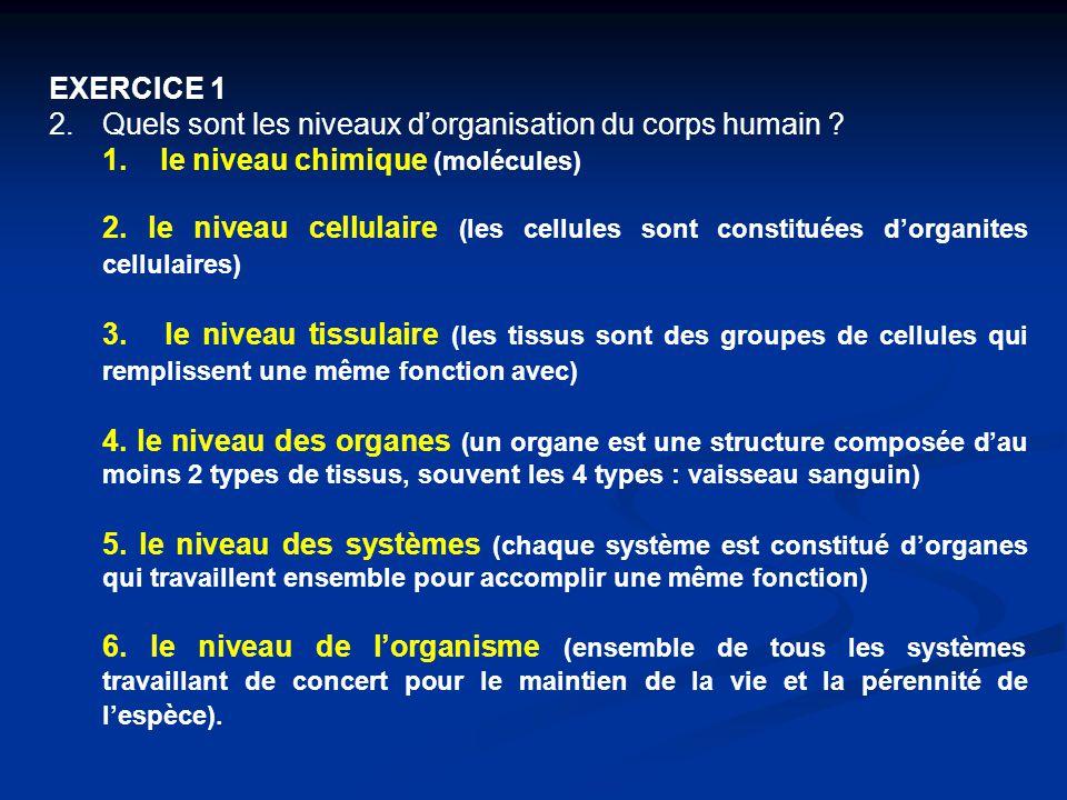 EXERCICE 1 2.Quels sont les niveaux d'organisation du corps humain ? 1. le niveau chimique (molécules) 2. le niveau cellulaire (les cellules sont cons