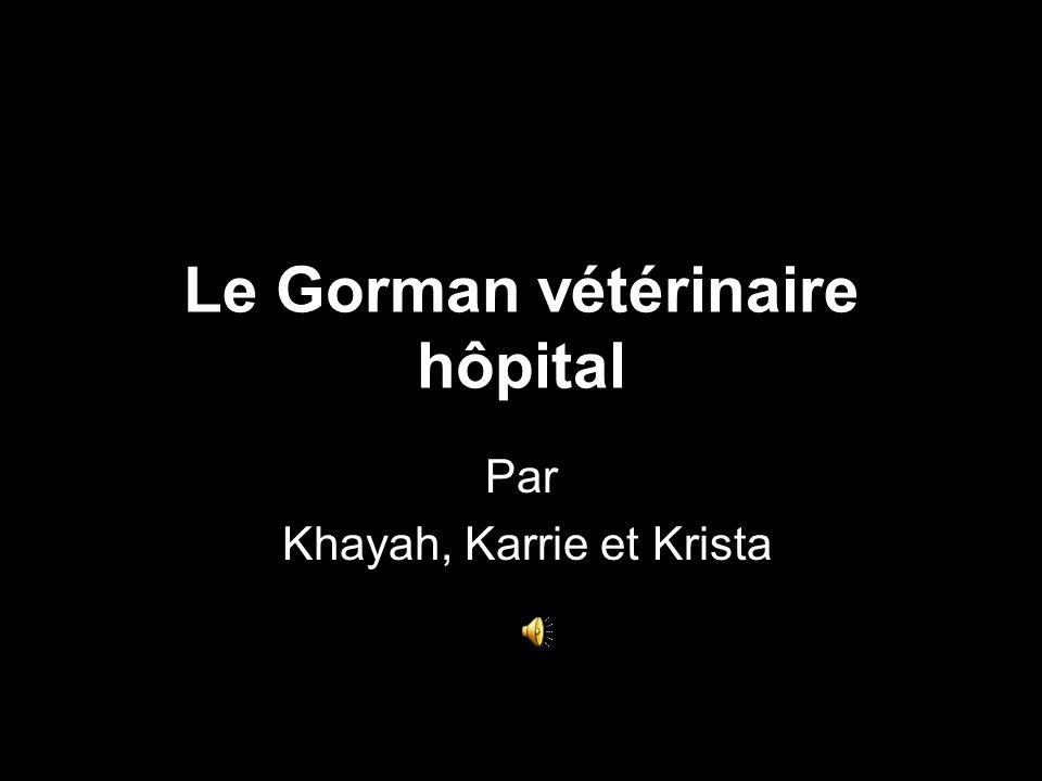 Le Gorman vétérinaire hôpital Par Khayah, Karrie et Krista