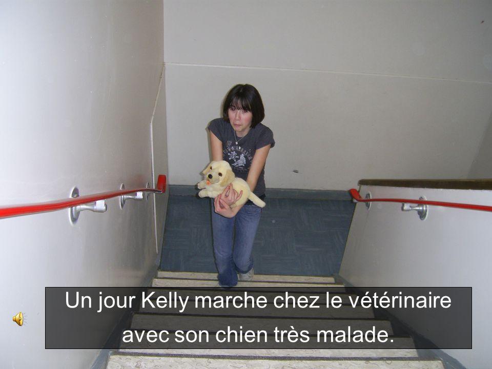 Elles couchent le chien de Kelly. Le chien est guéri.