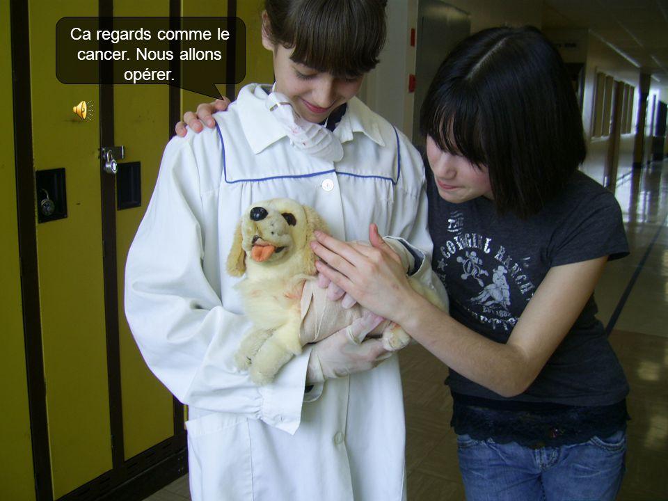 Alors Docteur Gorman amène le chien dans la pièce d'examen.