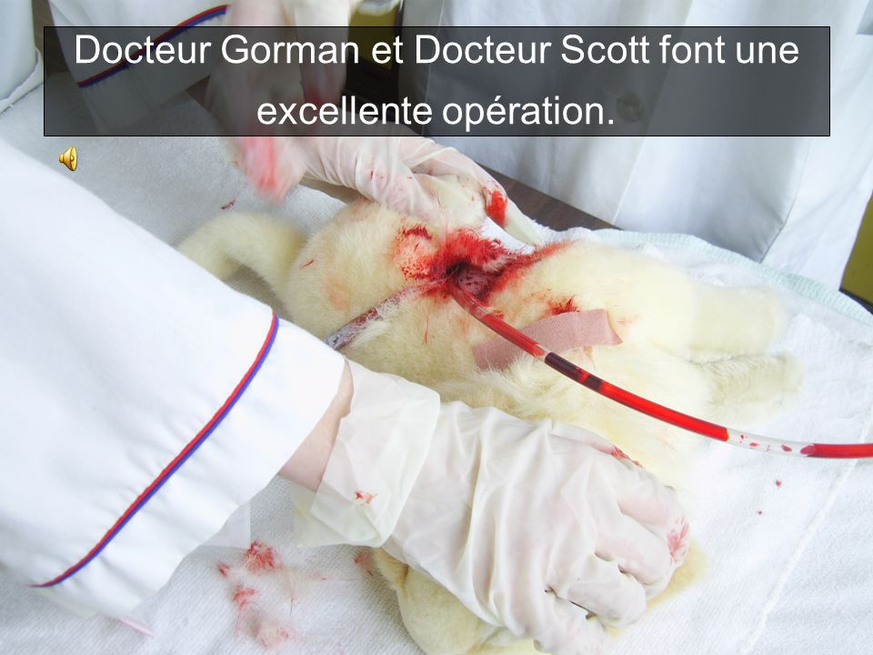 Docteur Gorman et Docteur Scott font une excellente opération.