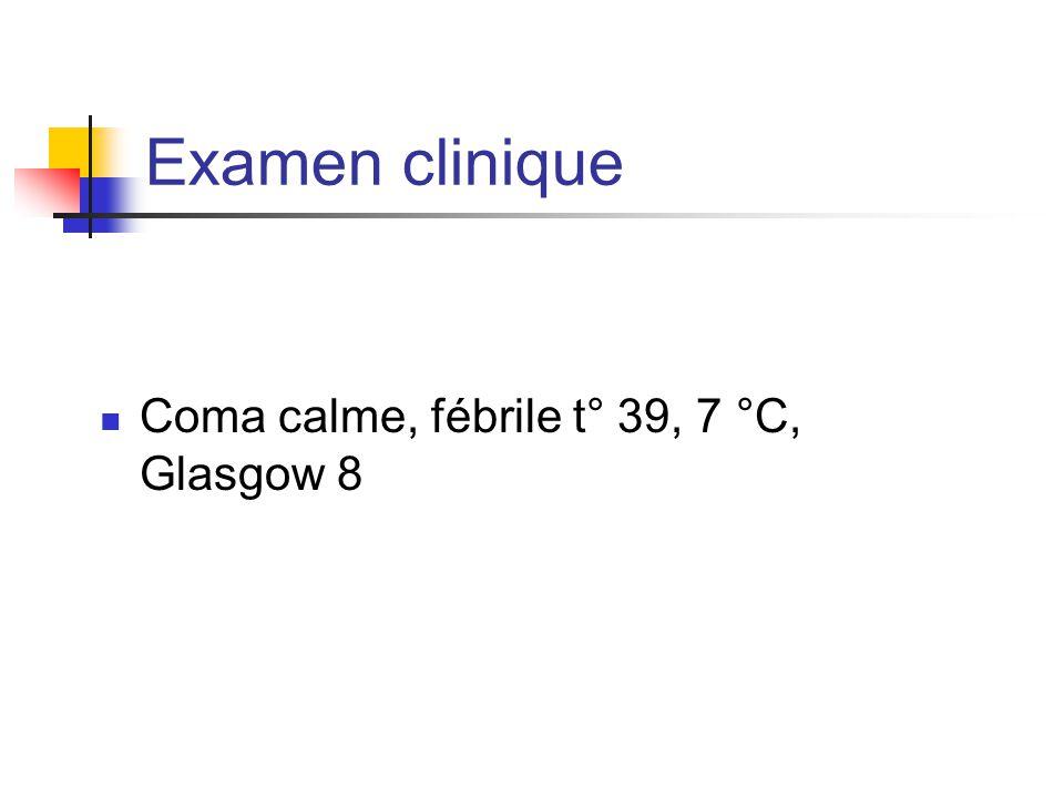 Examen clinique Coma calme, fébrile t° 39, 7 °C, Glasgow 8