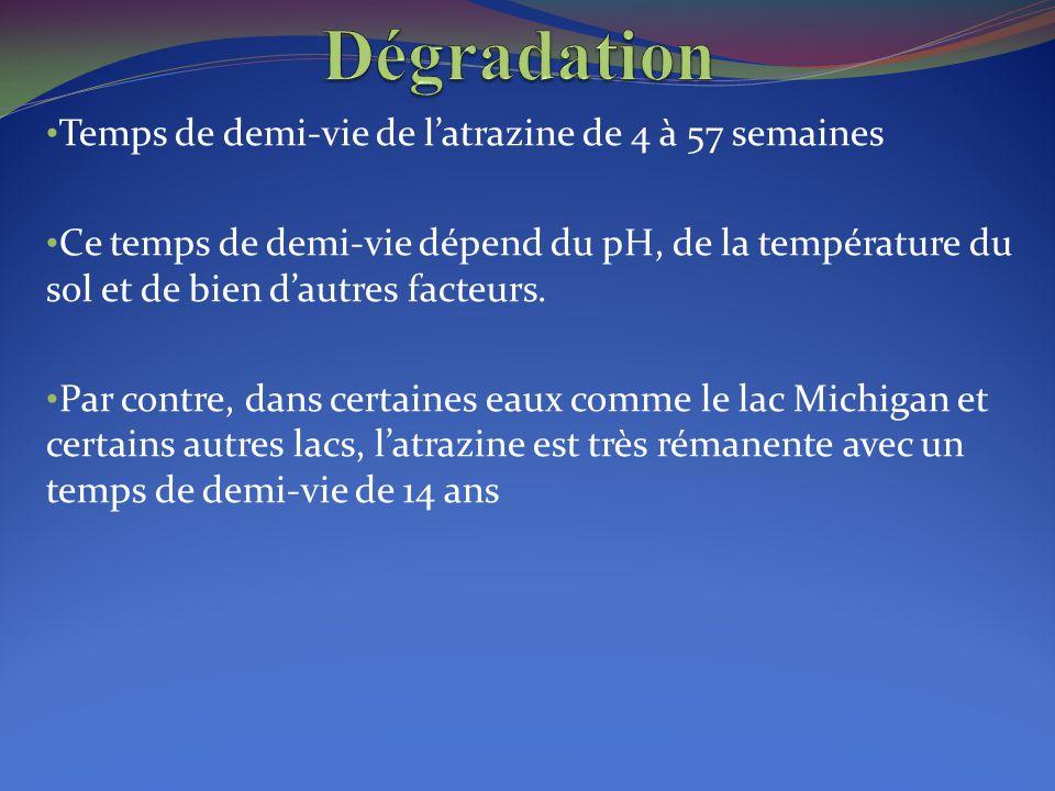 Temps de demi-vie de l'atrazine de 4 à 57 semaines Ce temps de demi-vie dépend du pH, de la température du sol et de bien d'autres facteurs. Par contr