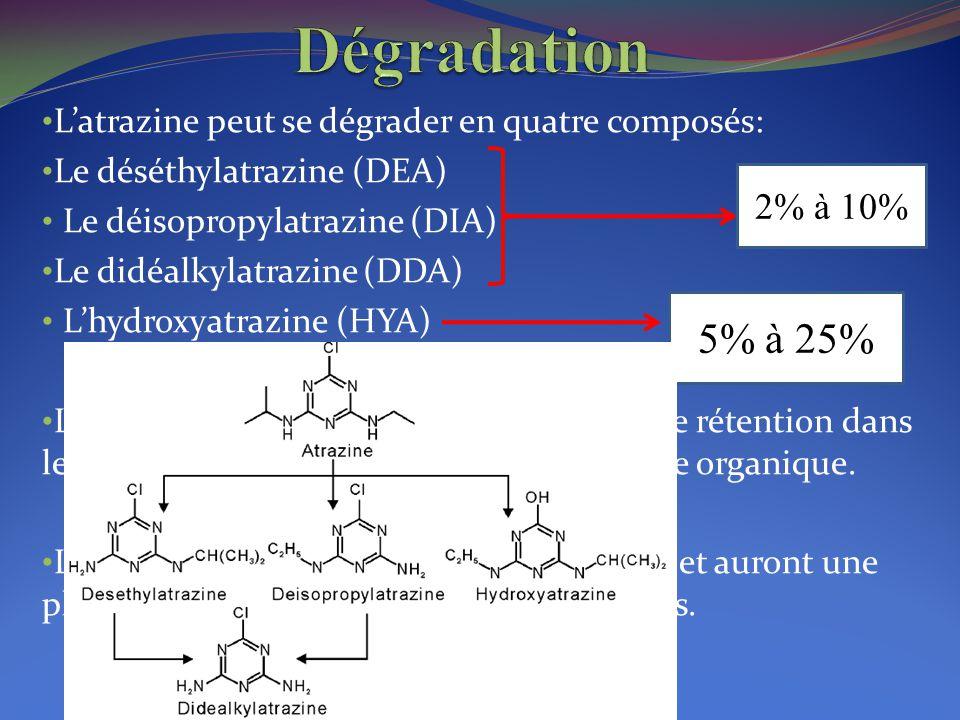L'atrazine peut se dégrader en quatre composés: Le déséthylatrazine (DEA) Le déisopropylatrazine (DIA) Le didéalkylatrazine (DDA) L'hydroxyatrazine (H