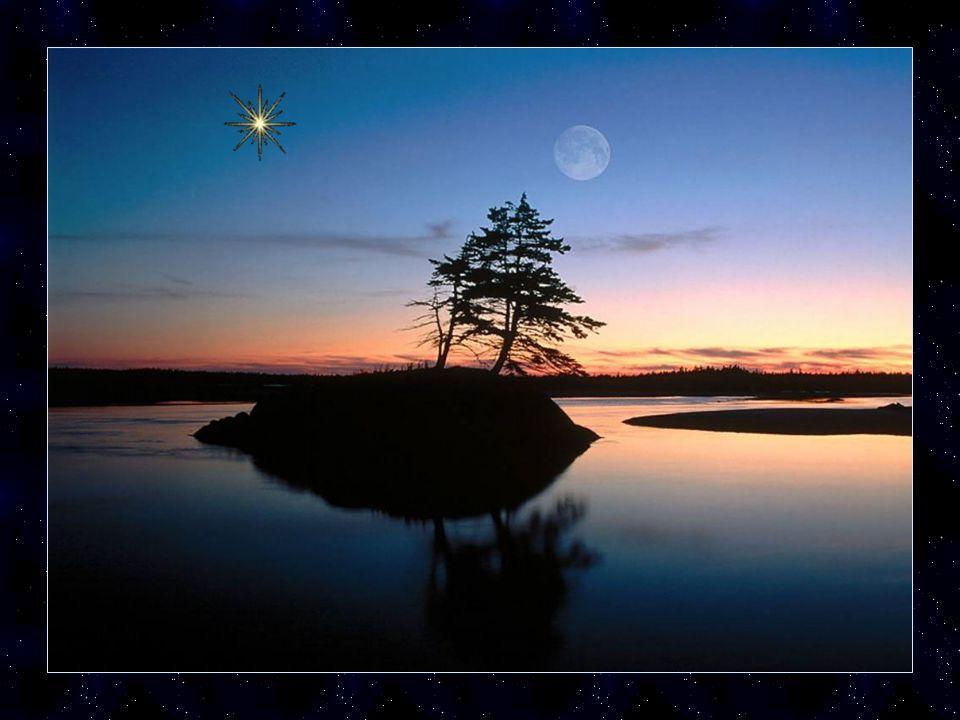 Alors à chaque fois que le questionnement sera difficile pense à cette petite étoile qui brille dans le ciel elle sera là pour toi afin de t'aider à t