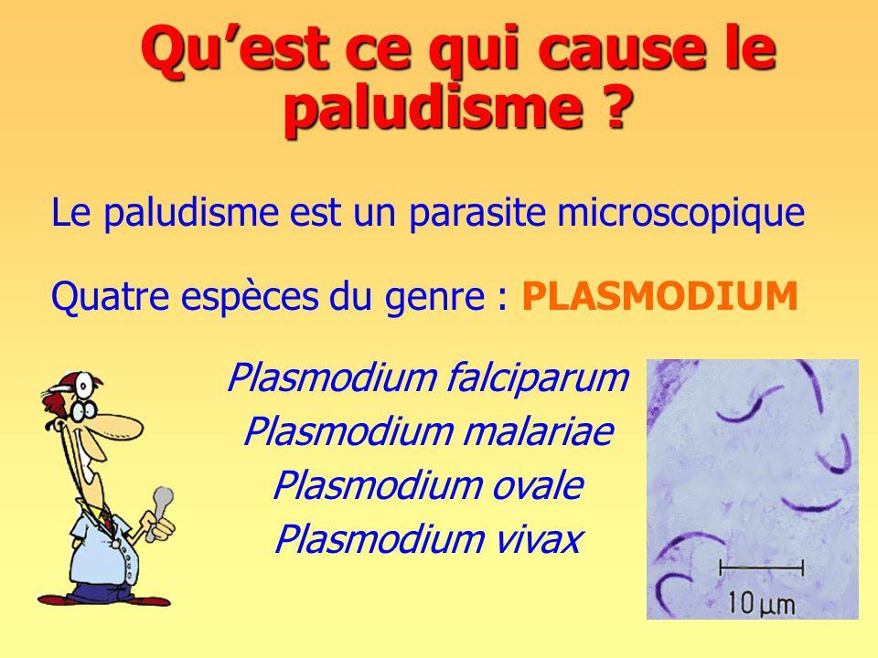 Quatre espèces du genre : PLASMODIUM Plasmodium falciparum Plasmodium malariae Plasmodium ovale Plasmodium vivax Qu'est ce qui cause le paludisme .