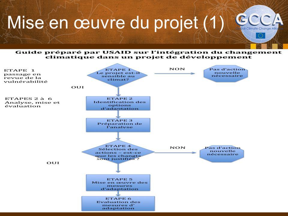 Mise en œuvre du projet (1) 9