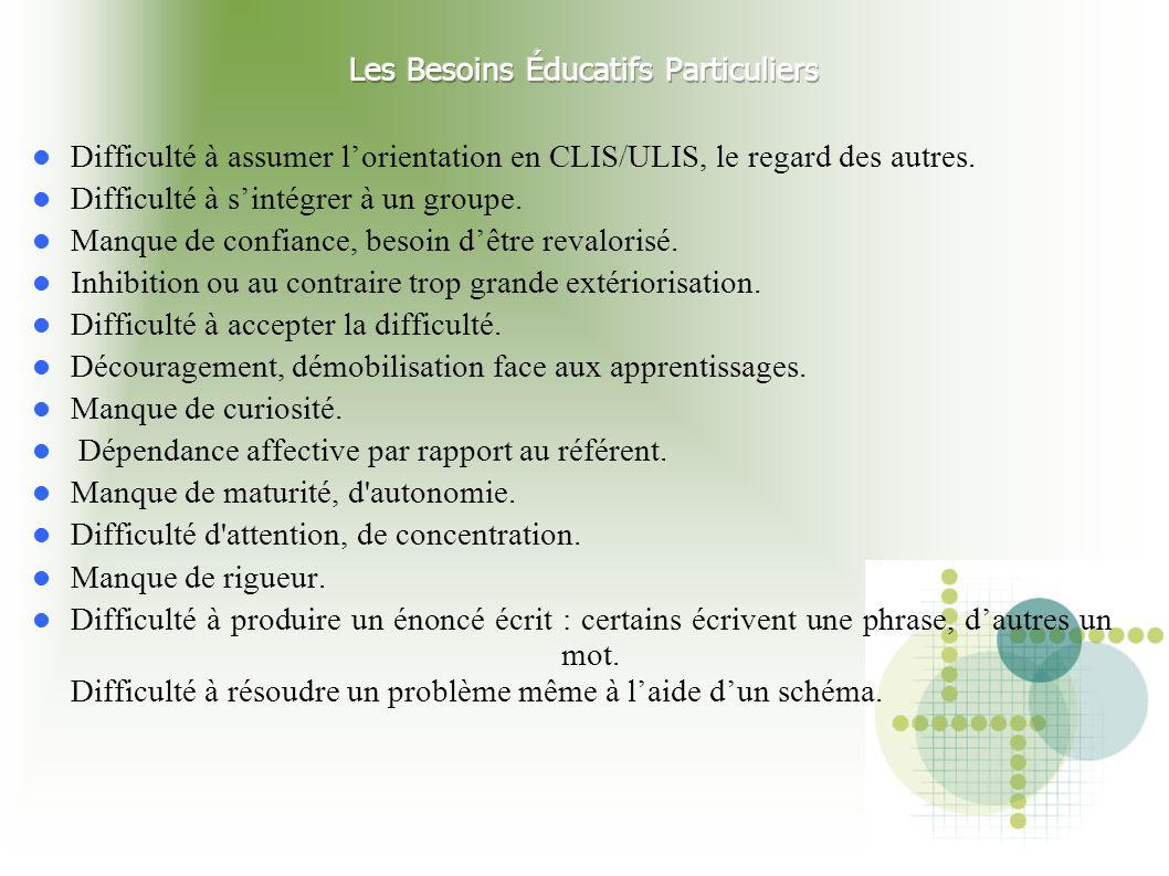 Difficulté à assumer l'orientation en CLIS/ULIS, le regard des autres. Difficulté à s'intégrer à un groupe. Manque de confiance, besoin d'être revalor