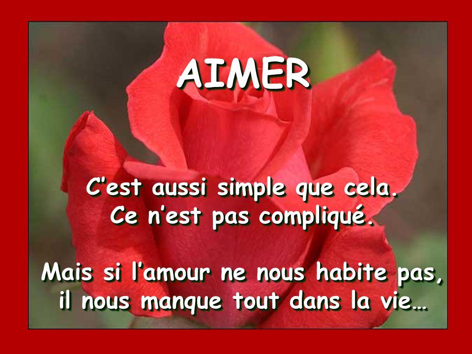 AIMER… C'est de ne pas juger, de ne pas critiquer, de ne pas condamner.