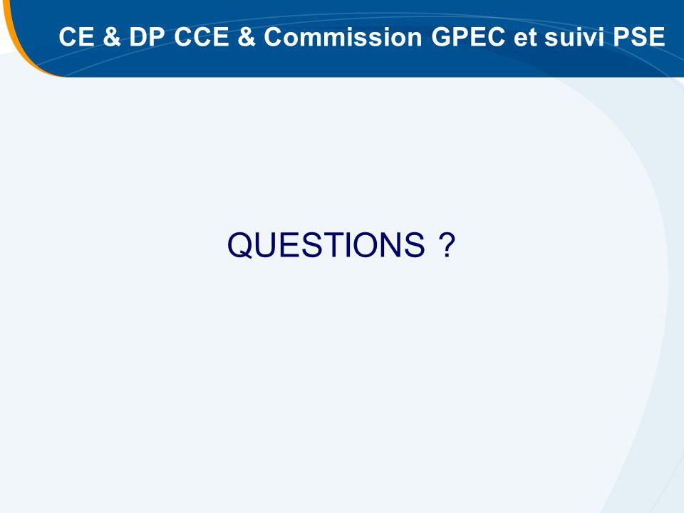 CE & DP CCE & Commission GPEC et suivi PSE QUESTIONS