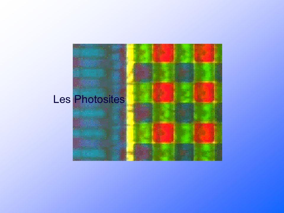 Les Photosites