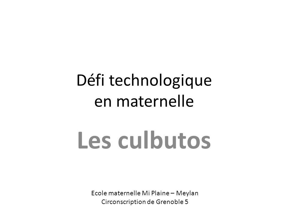 Défi technologique en maternelle Les culbutos Ecole maternelle Mi Plaine – Meylan Circonscription de Grenoble 5