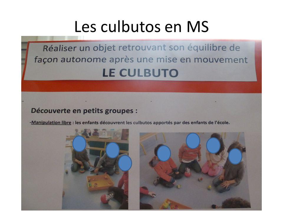 Les culbutos en MS