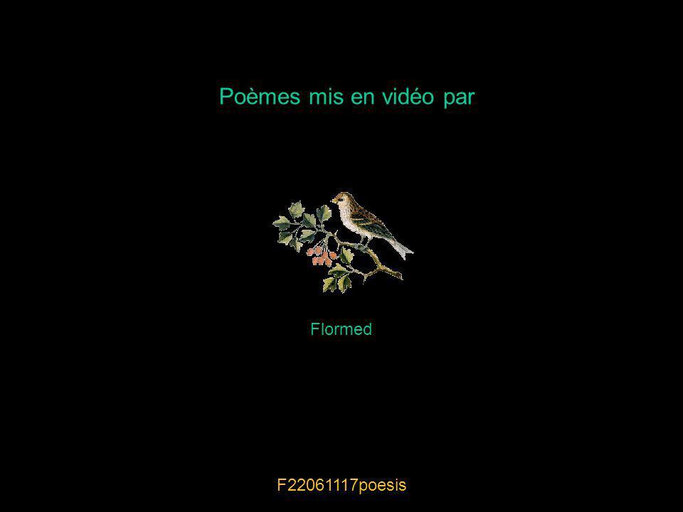 Poèmes mis en vidéo par Flormed F22061117poesis
