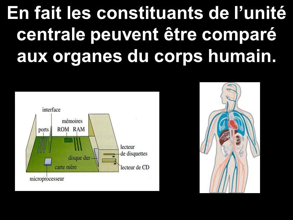 En fait les constituants de l'unité centrale peuvent être comparé aux organes du corps humain.