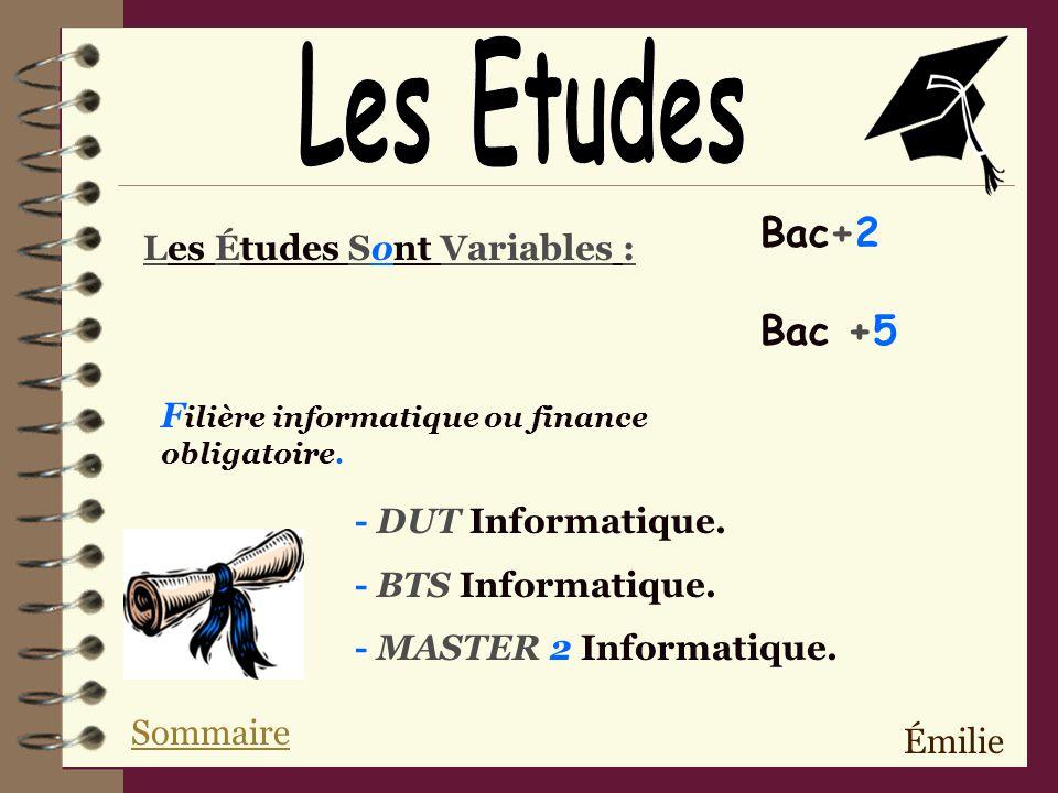 Émilie Les Études Sont Variables : Bac+2 Bac +5 F ilière informatique ou finance obligatoire.