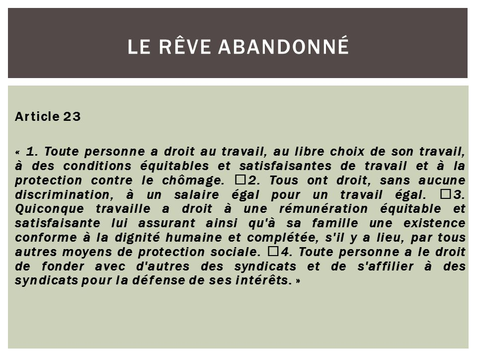 Article 23 « 1.