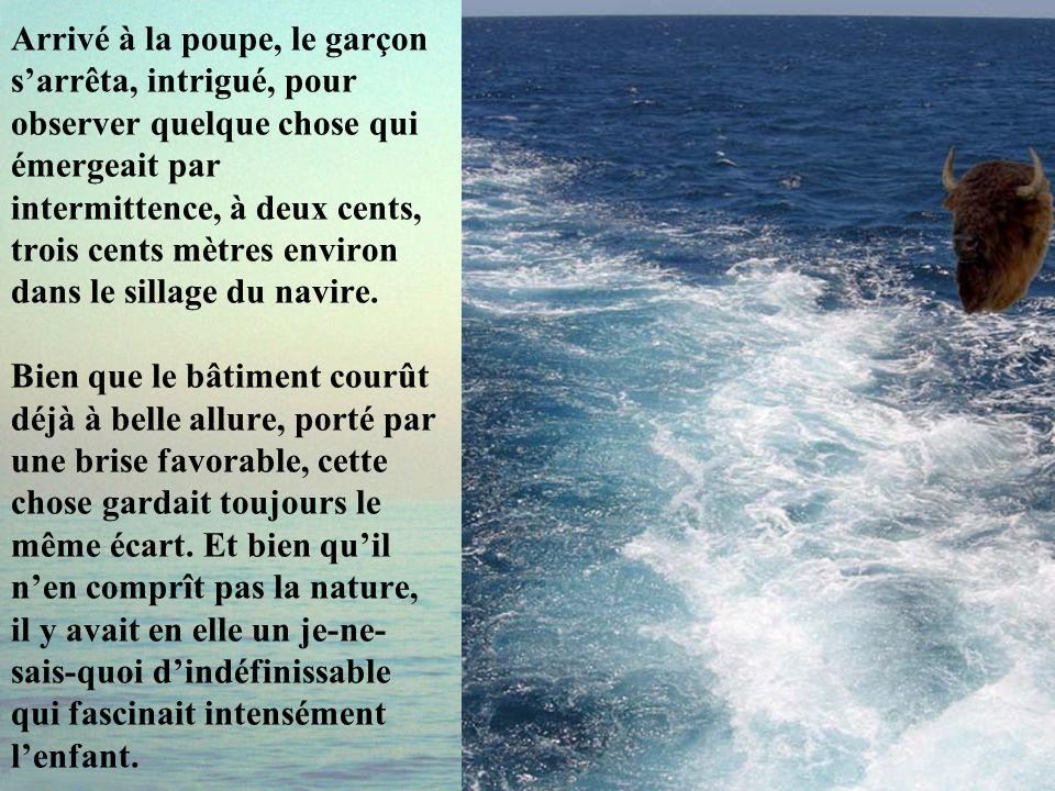 C'était une journée splendide, ensoleillée, et la mer était calme. Stefano, qui n'était jamais monté sur le bateau, courait tout heureux sur le pont,