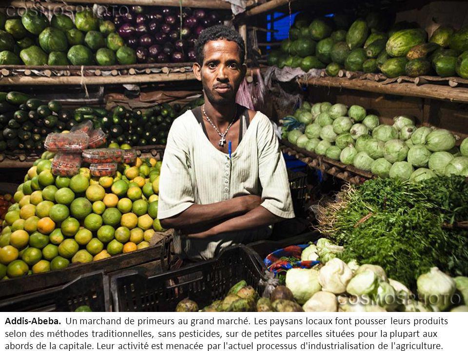 Addis-Abeba.Un marchand de primeurs au grand marché.