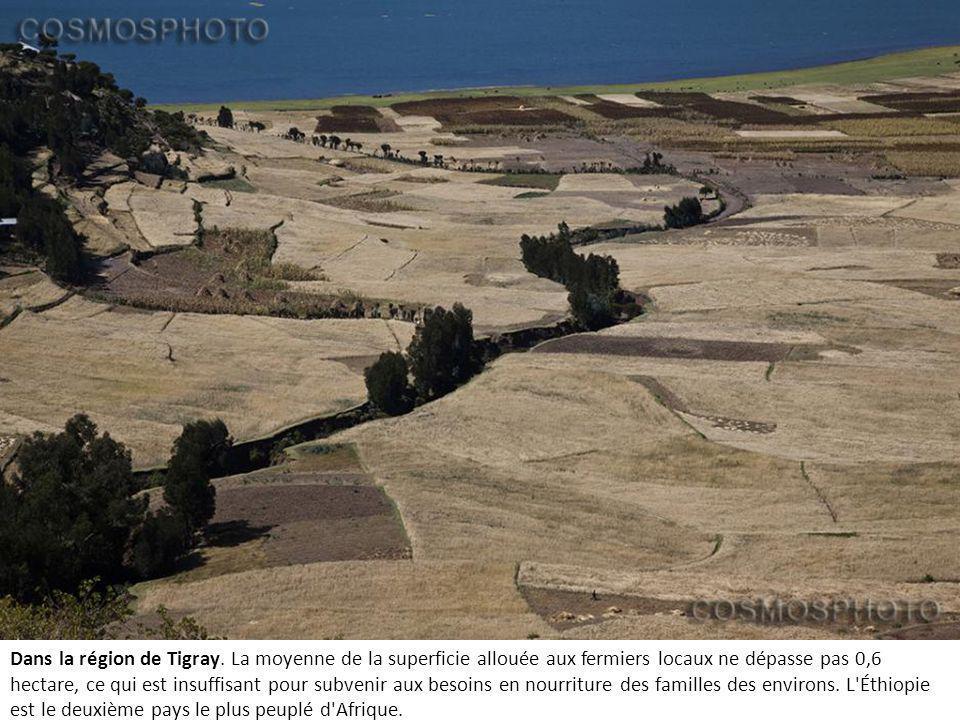 Dans la région de Tigray.