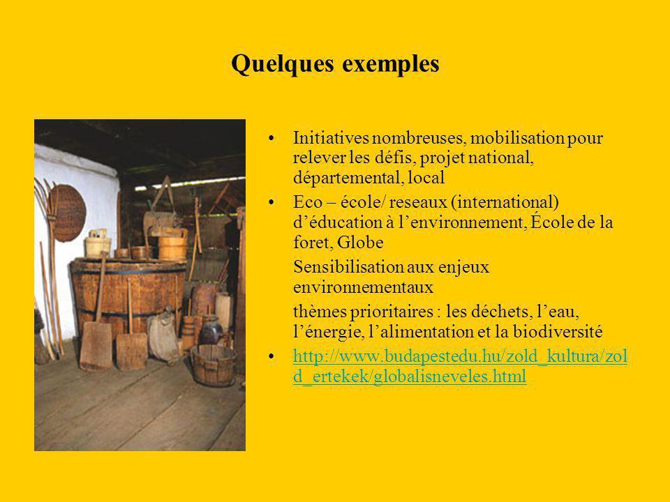 Quelques exemples Initiatives nombreuses, mobilisation pour relever les défis, projet national, départemental, local Eco – école/ reseaux (internation