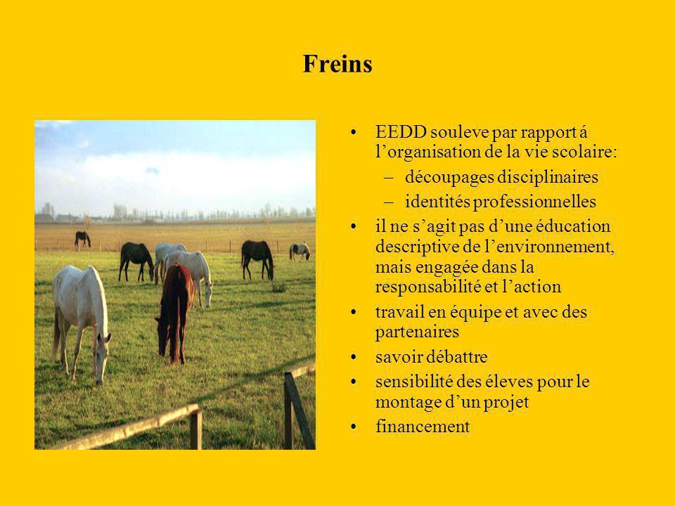 Freins EEDD souleve par rapport á l'organisation de la vie scolaire: –découpages disciplinaires –identités professionnelles il ne s'agit pas d'une édu