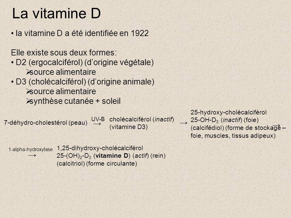 La vitamine D la vitamine D a été identifiée en 1922 Elle existe sous deux formes: D2 (ergocalciférol) (d'origine végétale)  source alimentaire D3 (cholécalciférol) (d'origine animale)  source alimentaire  synthèse cutanée + soleil 7-déhydro-cholestérol (peau) → UV-B cholécalciférol (inactif) (vitamine D3) → 25-hydroxy-cholécalciférol 25-OH-D 3 (inactif) (foie) (calcifédiol) (forme de stockage – foie, muscles, tissus adipeux) → → 1,25-dihydroxy-cholécalciférol 25-(OH) 2 -D 3 (vitamine D) (actif) (rein) (calcitriol) (forme circulante) 1-alpha-hydroxylase