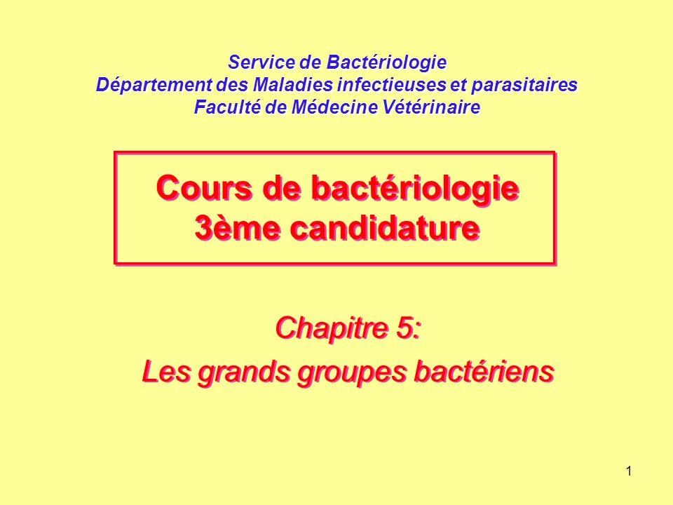 1 Service de Bactériologie Département des Maladies infectieuses et parasitaires Faculté de Médecine Vétérinaire Chapitre 5: Les grands groupes bactér