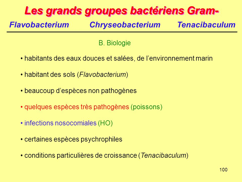 100 Les grands groupes bactériens Gram- B. Biologie habitants des eaux douces et salées, de l'environnement marin habitant des sols (Flavobacterium) b