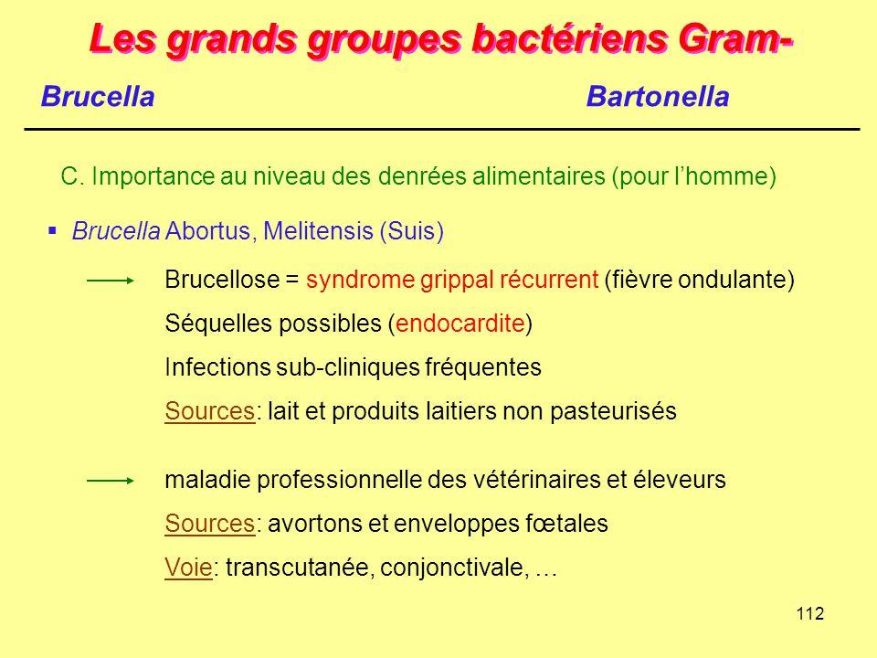 112 Les grands groupes bactériens Gram- Brucella C. Importance au niveau des denrées alimentaires (pour l'homme)  Brucella Abortus, Melitensis (Suis)