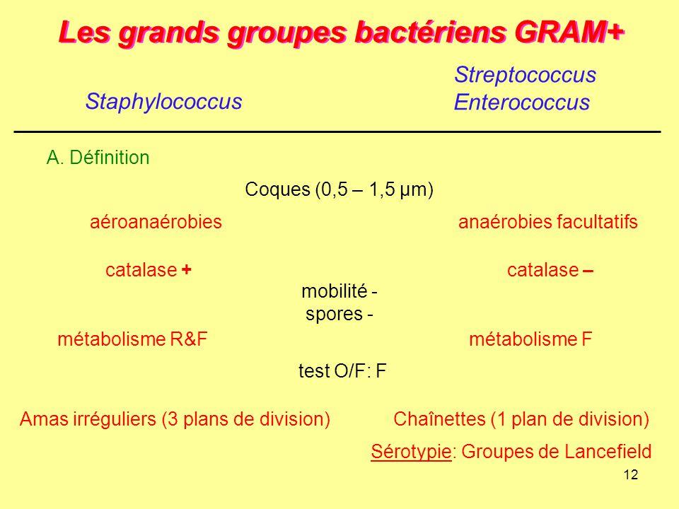 12 Les grands groupes bactériens GRAM+ Staphylococcus Streptococcus Enterococcus A. Définition Coques (0,5 – 1,5 µm) mobilité - spores - test O/F: F a