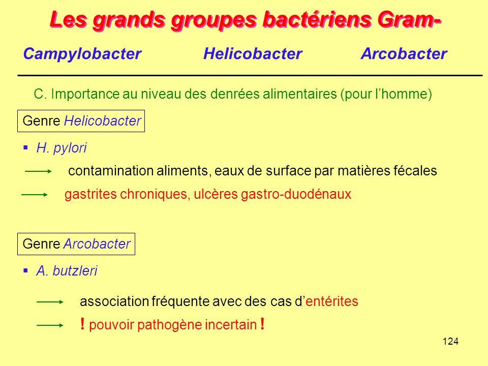 124 Les grands groupes bactériens Gram- C. Importance au niveau des denrées alimentaires (pour l'homme) CampylobacterHelicobacterArcobacter  H. pylor