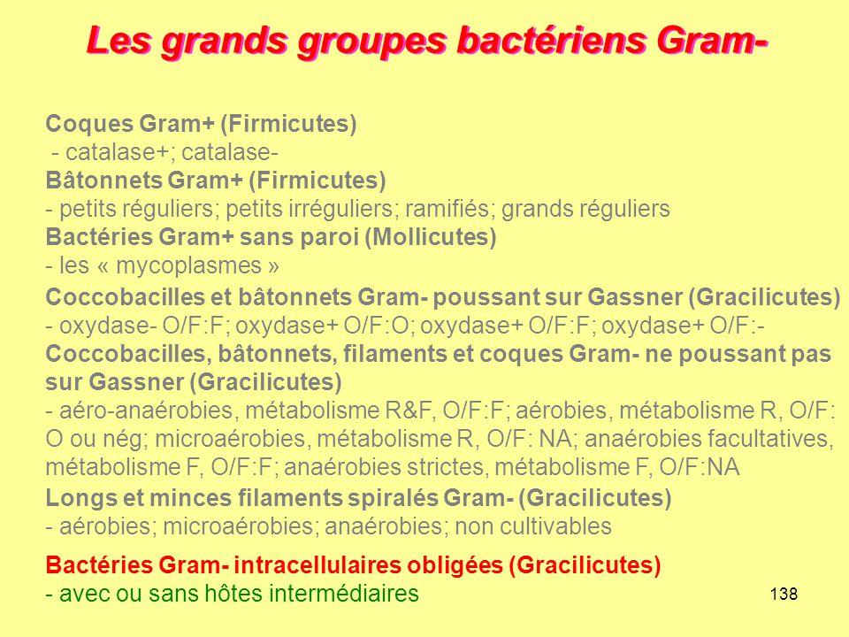 138 Les grands groupes bactériens Gram- Longs et minces filaments spiralés Gram- (Gracilicutes) - aérobies; microaérobies; anaérobies; non cultivables