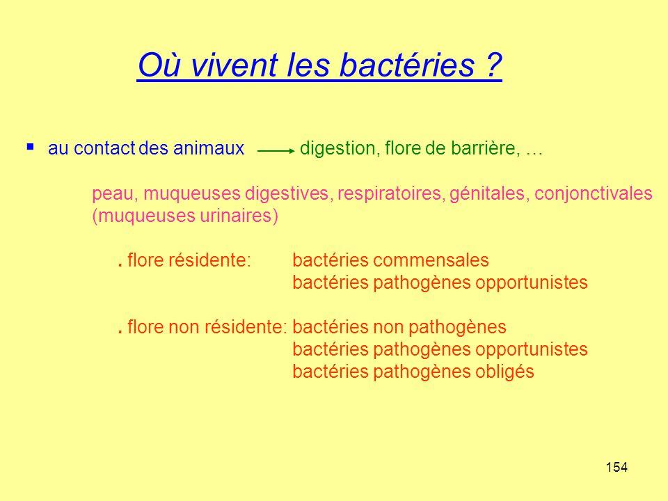 154 Où vivent les bactéries ?  au contact des animaux digestion, flore de barrière, … peau, muqueuses digestives, respiratoires, génitales, conjoncti