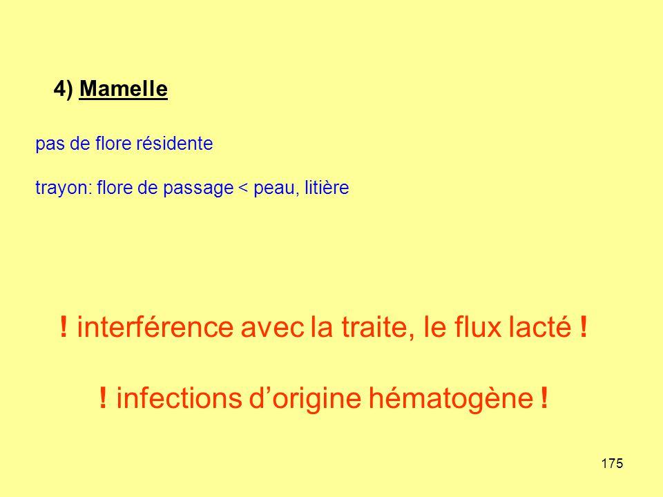 175 pas de flore résidente trayon: flore de passage < peau, litière ! interférence avec la traite, le flux lacté ! ! infections d'origine hématogène !