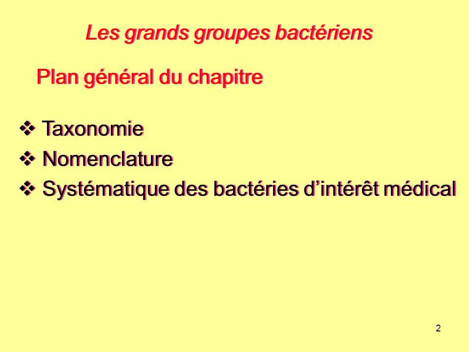 2 Les grands groupes bactériens Plan général du chapitre  Taxonomie  Nomenclature  Systématique des bactéries d'intérêt médical  Taxonomie  Nomen