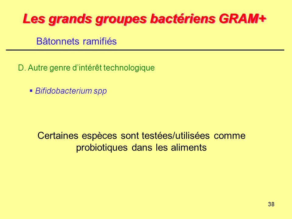 38 Les grands groupes bactériens GRAM+ D. Autre genre d'intérêt technologique Bâtonnets ramifiés  Bifidobacterium spp Certaines espèces sont testées/