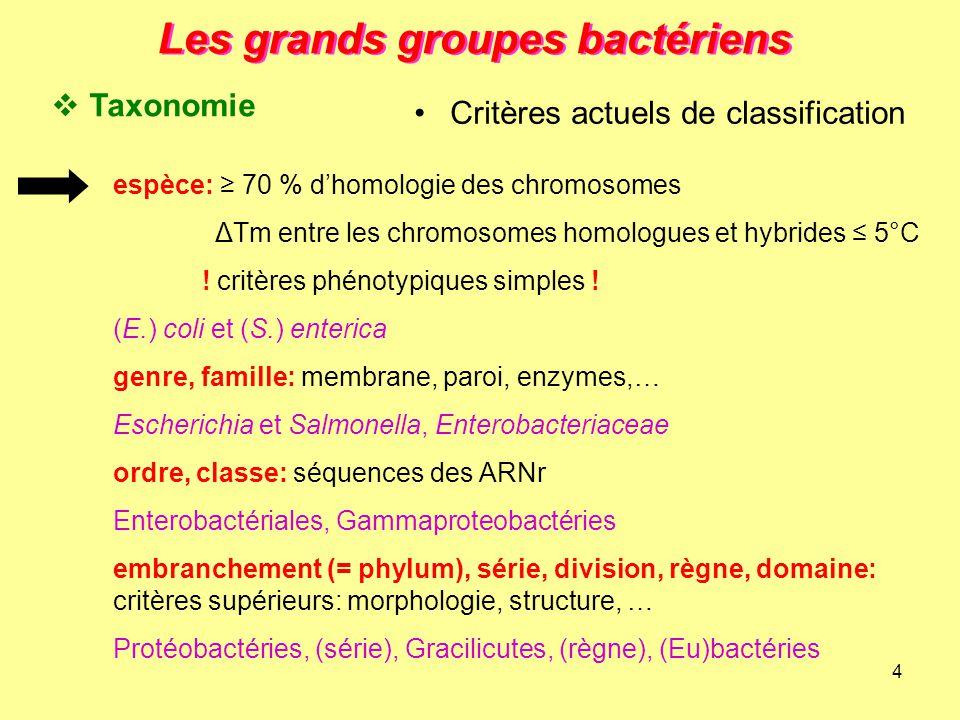 4 Les grands groupes bactériens espèce: ≥ 70 % d'homologie des chromosomes ΔTm entre les chromosomes homologues et hybrides ≤ 5°C ! critères phénotypi