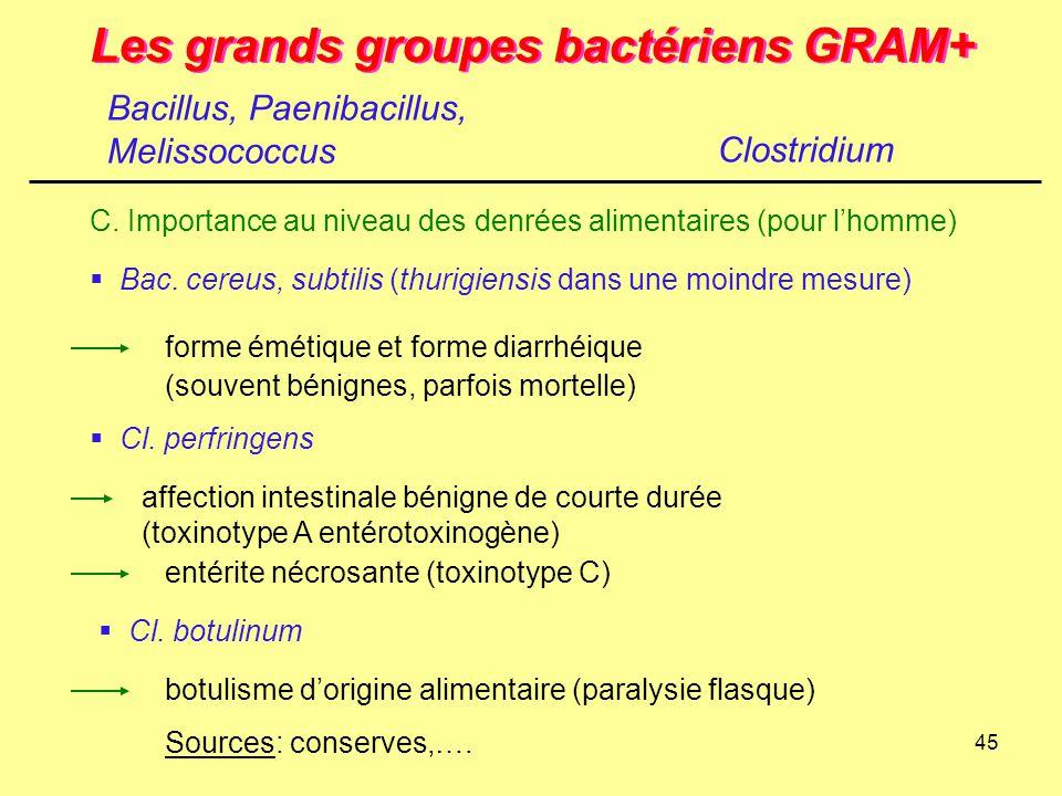 45 Les grands groupes bactériens GRAM+ Clostridium C. Importance au niveau des denrées alimentaires (pour l'homme)  Bac. cereus, subtilis (thurigiens